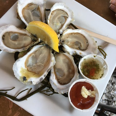 You're in Wellfleet, It's About the Oysters