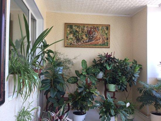 Vanino, Rusia: фото балкона в номере