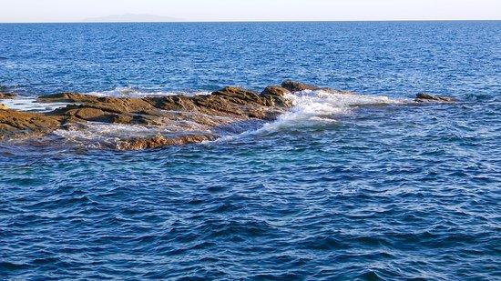 Costiera di Calafuria: il mare blu