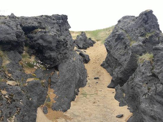Budir, Islandia: 20180723_130121_large.jpg