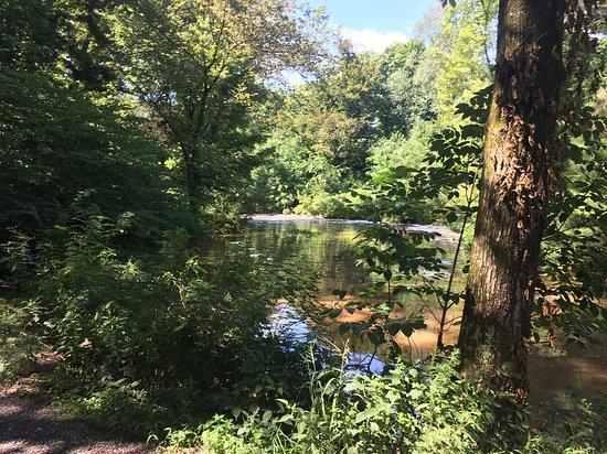 Hillsborough, NJ: Creek