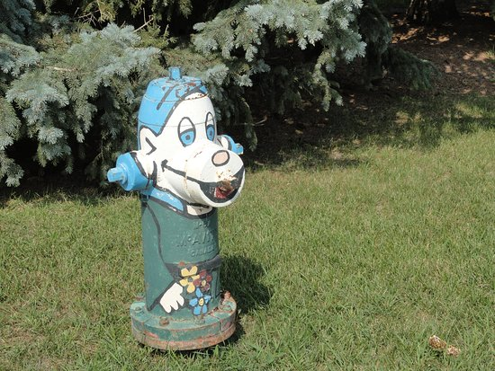 Morris, Канада: Cute fire hydrants