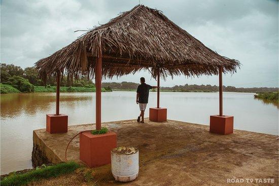 Divar Island صورة فوتوغرافية