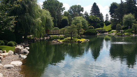 Normandale Japanese Garden broad view