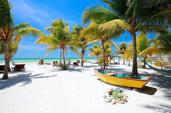 Tour por la isla Holbox desde Playa...