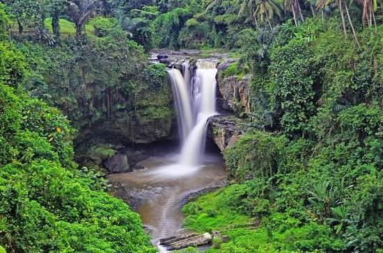 Tour Privativo: Cachoeira Tegenungan...