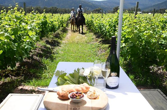 Half Day Wine Trail on Horseback