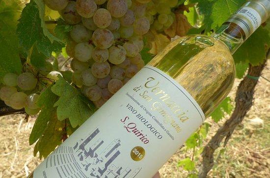 Dégustation de vin Maxi Gourmet...