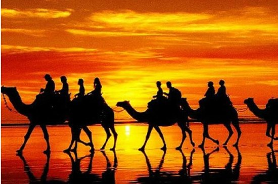 Taghazout Sunset Camel Ride med...