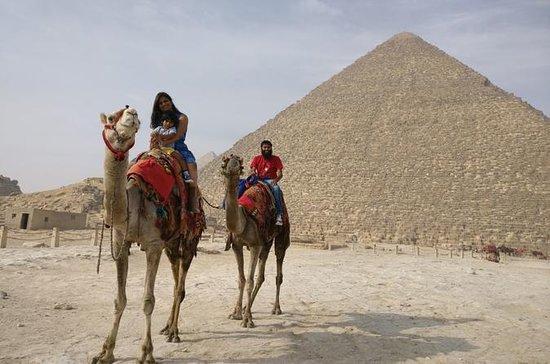 Tagestour Pyramiden, Sphinx, Sakkara...