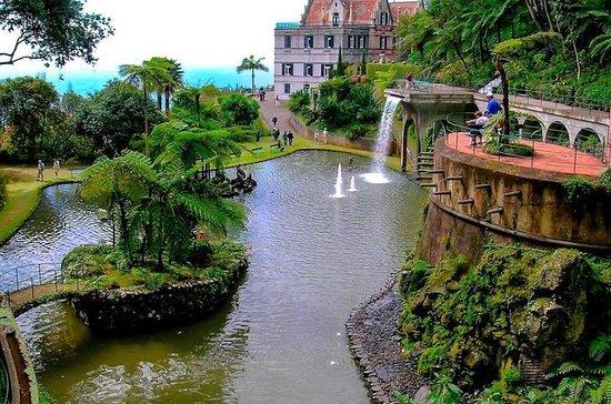 Serviço VIP Privado Madeira Island...