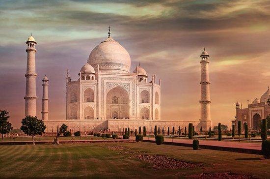 Privat Taj Mahal og Agra Fort-tur fra...