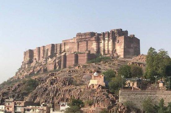 Jodhpur-stadstour met kameelsafari en ...