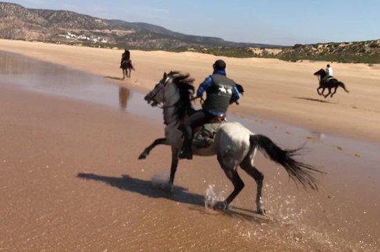 mezza giornata a cavallo Ride in