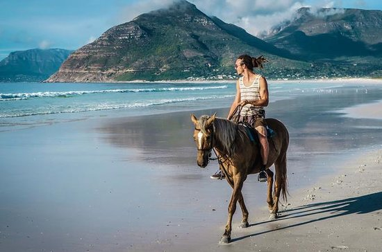 Horse trekking agadir