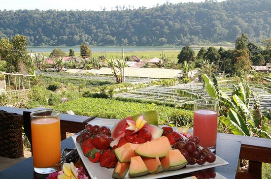 Cosmo Bali Package Tour: Bedugul ...