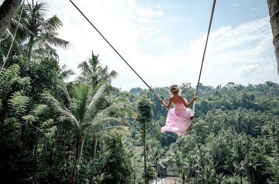 Visite de Best Of Ubud: terrasse de...