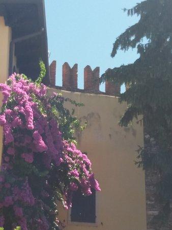 Foto Cisano