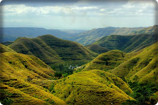 Sumba, Indonesien: Savana untill the top of the hills