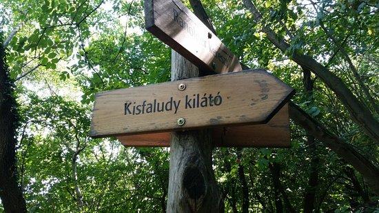 Badacsony, Hungary: Kisfaludy Aussichtsturm