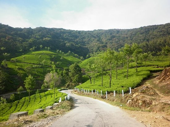 Marayur, India: this is  a beautiful valley on the way to marayoor