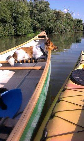 Canoe renting - Little Danube