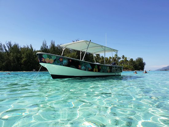 Enjoy Boat Tours Moorea