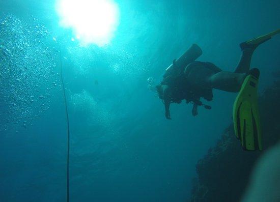 Florida Keys Dive Center Picture