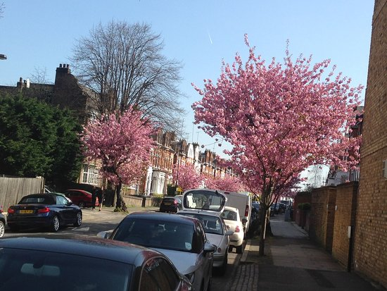 Crouch End Photo