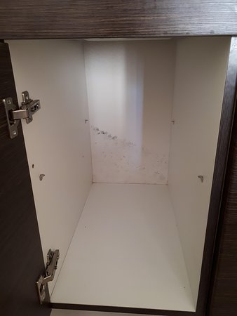 Belo Horizonte: the mold in the kitchen cabinet