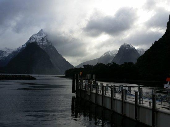 Cruise Milford NZ小型精品游轮体验照片