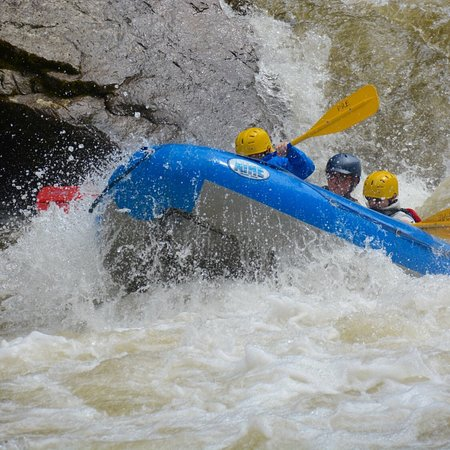Precision Rafting Expeditions: photo0.jpg