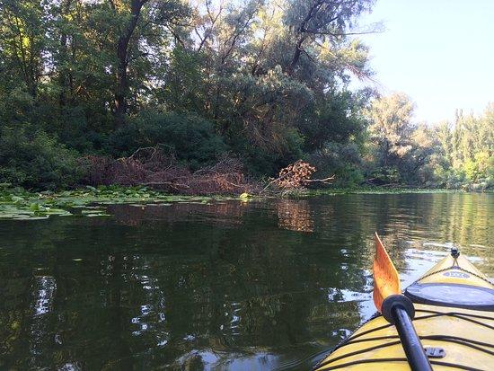 Kayak Canoe Centre