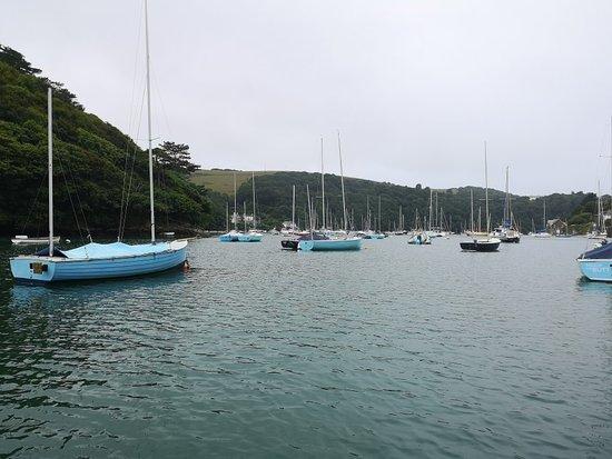 Noss Mayo, UK: Fantastic boat trip with Jonathan