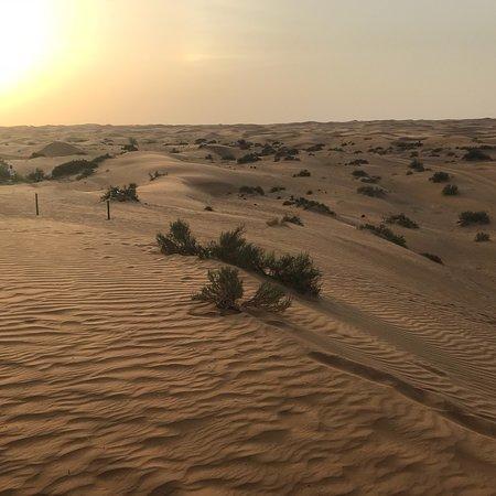 Bilde fra Camel Desert Safari med tradisjonell middag og kulturarv aktiviteter fra Dubai