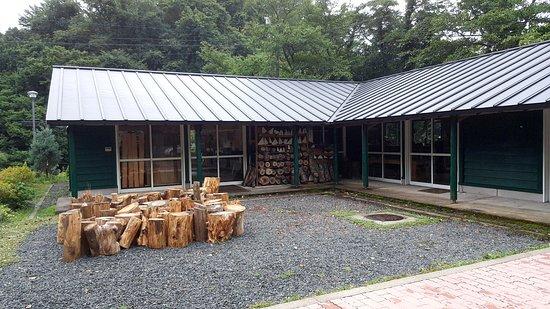Misasa-cho, Japan: 三朝音樂博物館製樂器製作學校