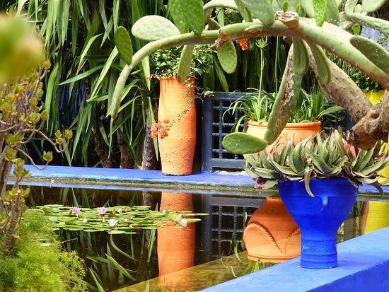 Bassin 2 - Bild von Majorelle Garten (Jardin Majorelle), Marrakesch ...
