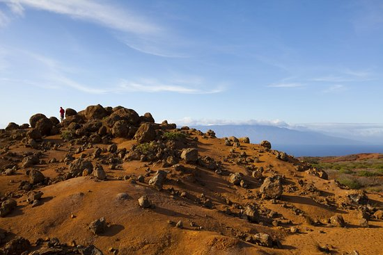 Νησί Lanai, Χαβάη: Keahiakawelo (Garden of the Gods)