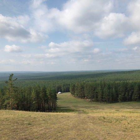 Good forest walk