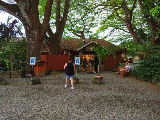 Kaneohe, HI: Thd grounds