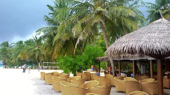 Alimathaa Island Photo
