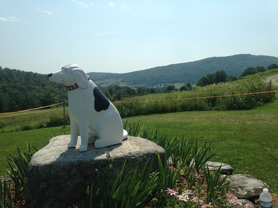Dog Mountain Home of Stephen Huneck Gallery