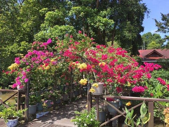 Kinabatangan District, Malaysia: welcome