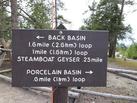 Norris Geyser Basin: Norris basin