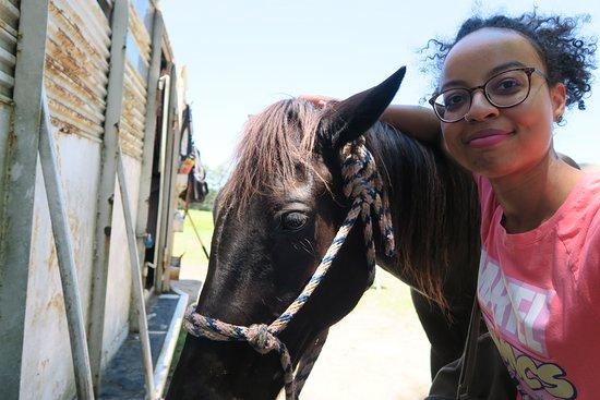 Griffin, GA: Sweet horse