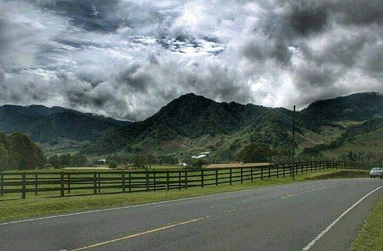 Cerro Punta, פנמה: Cerro Punta