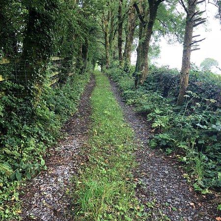 Carran, Irland: photo8.jpg