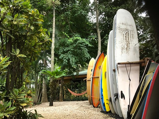 KayaSol Surf Hotel: Lounging area near pool - boards of guests on the rack