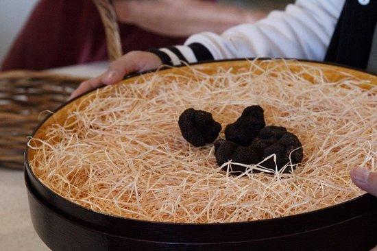 Bredbo, أستراليا: Our truffle haul for the morning