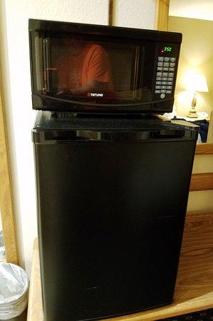 Johnson City, NY: Microwave and Fridge